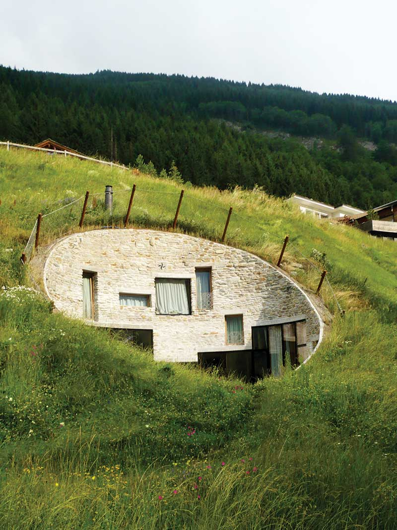 underground houses. Extensive green roof systems are not intended for general access or leisure  and primarily there ecological benefit aesthetic appearance The Underground House