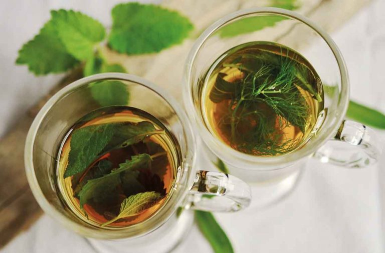 Grow your own herbal tea